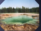 Emerald Spring, Yellowstone National Park, 1902, Detroit Photographic Co.